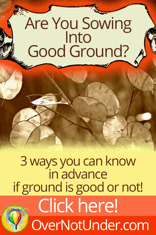 Are You Sowing Into Good Ground? Here are 3 ways to know | by Jamie Rohrbaugh | FromHisPresence.com
